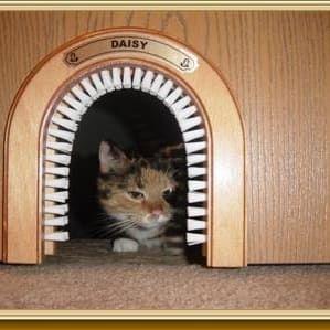bbb02eb644dd712afdcd955345fc35b5--cat-cave-cat-trees.jpg