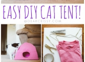 DIY Cat Tent for Kitties Who Play Hard