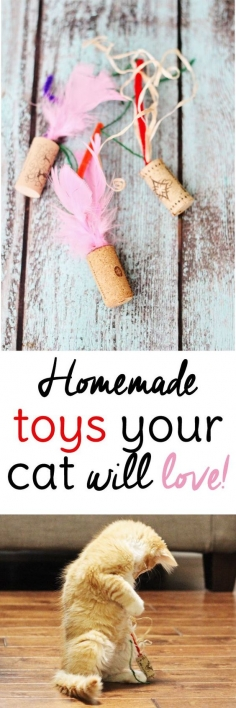 Easy Cat Toys to Make from Wine Corks