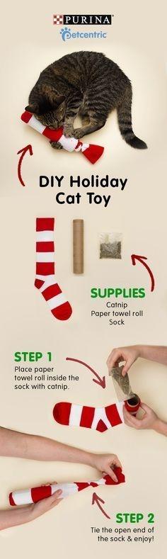 Sock catnip
