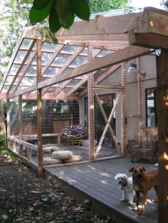 Catios a safe way to enjoy outdoors