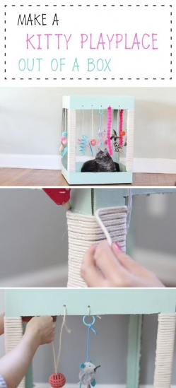 Your cat will LOVE this adorable DIY