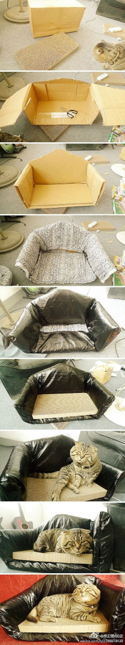 DIY Carton Cat Bed DIY Projects