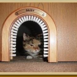 23 productos increíblemente ingeniosos que todo dueño de un gato querrá tener 23 productos increíblemente ingeniosos que todo dueño de un gato querrá tener 23 productos increíblemente ingeniosos que todo dueño de un gato querrá tener