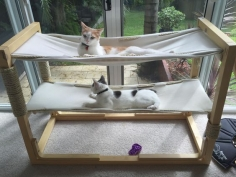Build Bunk Bed Hammocks for Your Cats