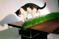 A grass table.