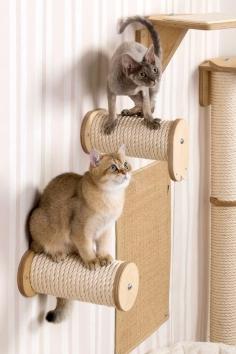 Profeline Climbing Wall for Cats