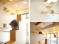 {cat house} a cat's wildest dreams come true. meow! This is so neat, just wish I could do this to my house, maybe to my screened in porch might do too.