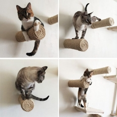 Crazy Sisal Cat Climbers from CatastrophiCreations!