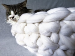 How to arm crochet a cat bed